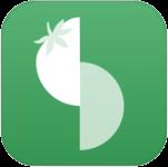 icon_slice
